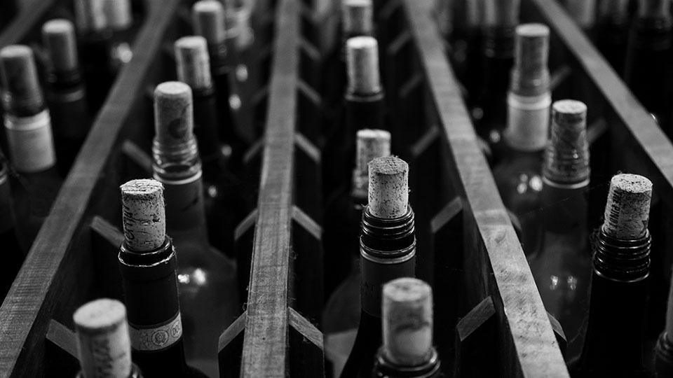 Bottles of wine in a case